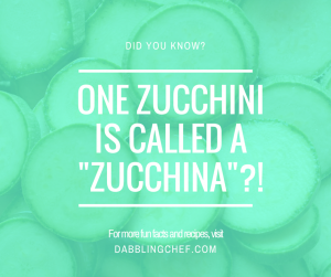 one zucchini is called a Zucchina-2